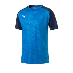 puma-cup-training-core-t-shirt-blau-f02-fussball-teamsport-textil-t-shirts-656027.png