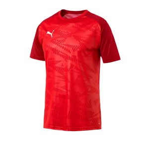 puma-cup-training-core-t-shirt-rot-f01-fussball-teamsport-textil-t-shirts-656027.png