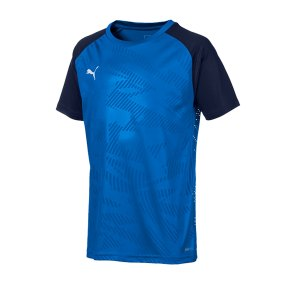 puma-cup-training-core-t-shirt-kids-blau-f02-fussball-teamsport-textil-t-shirts-656028.png