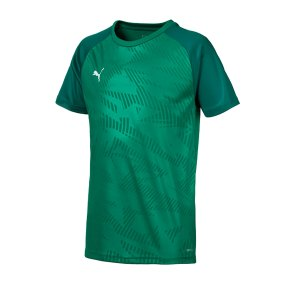puma-cup-training-core-t-shirt-kids-gruen-f05-fussball-teamsport-textil-t-shirts-656028.png