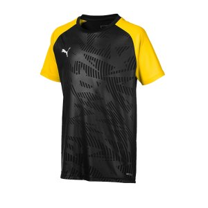 puma-cup-training-core-t-shirt-kids-schwarz-f18-fussball-teamsport-textil-t-shirts-656028.png