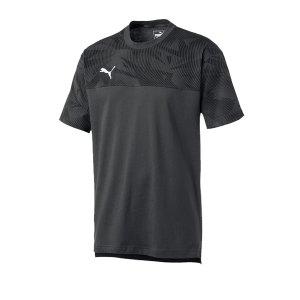 puma-cup-casuals-tee-t-shirt-grau-f37-fussball-teamsport-textil-t-shirts-656038.png