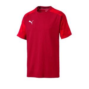 puma-cup-sideline-t-shirt-rot-f01-fussball-teamsport-textil-t-shirts-656049.png