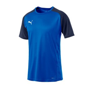 puma-cup-sideline-core-t-shirt-blau-f02-fussball-teamsport-textil-t-shirts-656051.png