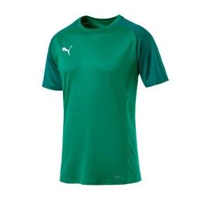 puma-cup-sideline-core-t-shirt-gruen-f05-fussball-teamsport-textil-t-shirts-656051.png