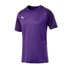puma-cup-sideline-core-t-shirt-lila-f10-fussball-teamsport-textil-t-shirts-656051.png