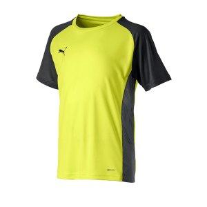 puma-cup-sideline-core-t-shirt-kids-gelb-f16-fussball-teamsport-textil-t-shirts-656052.png