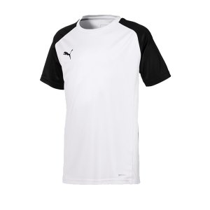 puma-cup-sideline-core-t-shirt-kids-weiss-f04-fussball-teamsport-textil-t-shirts-656052.png