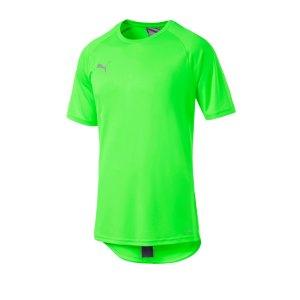 puma-ftblnxt-t-shirt-gruen-schwarz-f03-fussball-textilien-t-shirts-656103.png