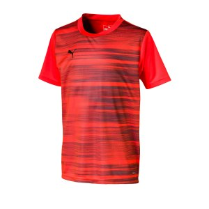 puma-ftblnxt-graphic-shirt-core-kids-rot-f003-fussball-textilien-t-shirts-656429.png