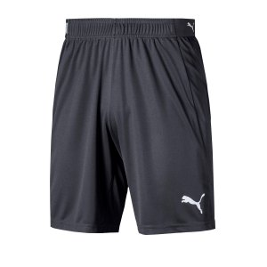 puma-ftblnxt-short-grau-f02-fussball-textilien-shorts-656433.png