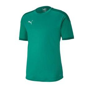 puma-teamfinal-21-training-trikot-gruen-f05-fussball-teamsport-textil-trikots-656481.png