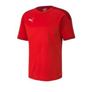 puma-teamfinal-21-training-trikot-rot-f01-fussball-teamsport-textil-trikots-656481.png