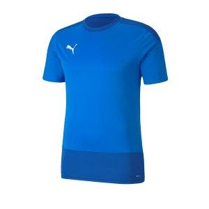 puma-teamgoal-23-training-trikot-blau-f02-fussball-teamsport-textil-trikots-656482.png