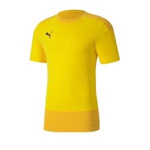 puma-teamgoal-23-training-trikot-gelb-f07-fussball-teamsport-textil-trikots-656482.png