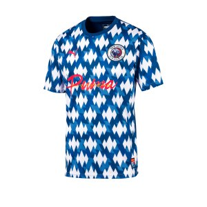 puma-showdown-jersey-blau-weiss-f01-fussball-textilien-t-shirts-656502.jpg