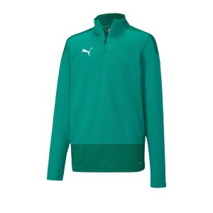 puma-teamgoal-23-training-1-4-zip-top-kids-f05-fussball-teamsport-textil-sweatshirts-656567.png
