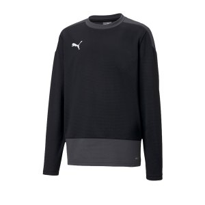 puma-teamgoal-23-training-sweatshirt-kids-f03-fussball-teamsport-textil-sweatshirts-656568.png
