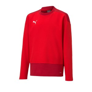 puma-teamgoal-23-training-sweatshirt-kids-rot-f01-fussball-teamsport-textil-sweatshirts-656568.png