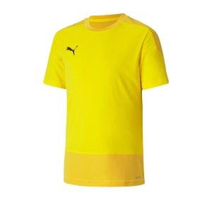 puma-teamgoal-23-training-trikot-kids-gelb-f07-fussball-teamsport-textil-trikots-656569.png