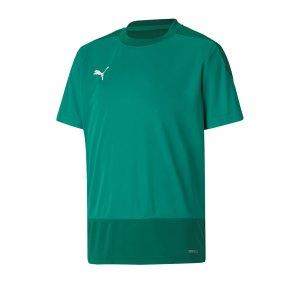 puma-teamgoal-23-training-trikot-kids-gruen-f05-fussball-teamsport-textil-trikots-656569.png