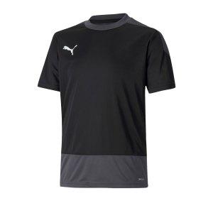 puma-teamgoal-23-training-trikot-kids-schwarz-f03-fussball-teamsport-textil-trikots-656569.png