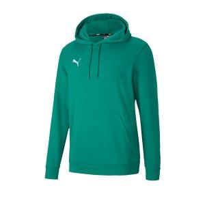 puma-teamgoal-23-casuals-hoody-gruen-f05-fussball-teamsport-textil-sweatshirts-656580.png