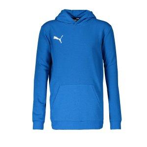 puma-teamgoal-23-casuals-hoody-kids-blau-f02-fussball-teamsport-textil-sweatshirts-656711.png