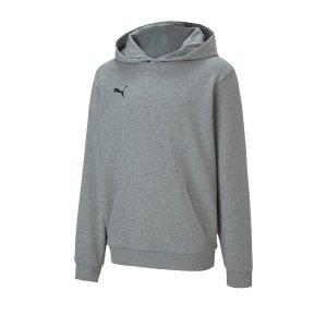 puma-teamgoal-23-casuals-hoody-kids-grau-f33-fussball-teamsport-textil-sweatshirts-656711.png