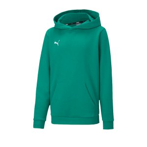 puma-teamgoal-23-casuals-hoody-kids-gruen-f05-fussball-teamsport-textil-sweatshirts-656711.png