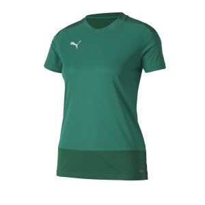 puma-teamgoal-23-training-trikot-damen-gruen-f05-fussball-teamsport-textil-trikots-656940.png