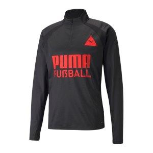 puma-park-halfzip-sweatshirt-training-schwarz-f03-657583-fussballtextilien_front.png
