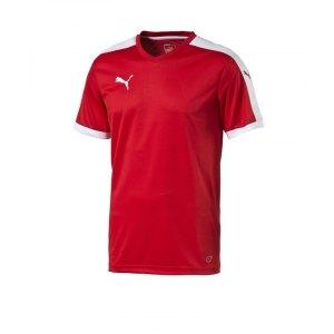 puma-pitch-shortsleeved-shirt-trikot-kurzarmtrikot-jersey-herrentrikot-teamwear-vereinsausstattung-men-herren-rot-f01-702070.png