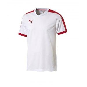 puma-pitch-shortsleeved-shirt-trikot-kurzarmtrikot-jersey-herrentrikot-teamwear-vereinsausstattung-men-herren-weiss-f12-702070.png