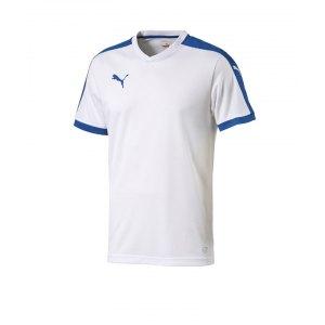 puma-pitch-shortsleeved-shirt-trikot-kurzarmtrikot-jersey-herrentrikot-teamwear-vereinsausstattung-men-herren-weiss-f13-702070.jpg