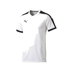puma-pitch-shortsleeved-shirt-trikot-kurzarmtrikot-jersey-kindertrikot-teamwear-vereinsausstattung-kids-children-weiss-f04-702070.png