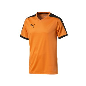 puma-pitch-shortsleeved-shirt-trikot-kurzarmtrikot-jersey-kindertrikot-teamwear-vereinsausstattung-kids-children-orange-f08-702070.jpg