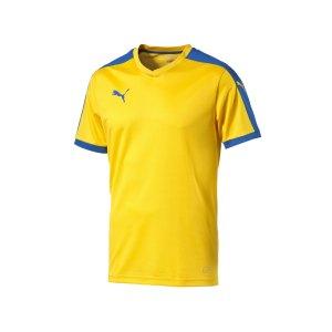 puma-pitch-shortsleeved-shirt-trikot-kurzarmtrikot-jersey-kindertrikot-teamwear-vereinsausstattung-kids-children-gelb-f20-702070.png