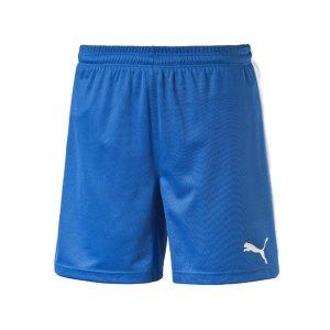 puma-pitch-short-mit-innenslip-hose-kurz-herrenshort-teamwear-teamsport-vereinsausstattung-men-herren-maenner-blau-f02-702075.jpg