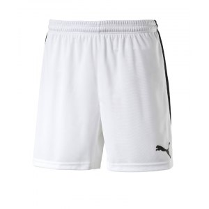 puma-pitch-short-mit-innenslip-hose-kurz-kindershort-teamwear-teamsport-vereinsausstattung-kids-children-kinder-weiss-f04-702075.jpg