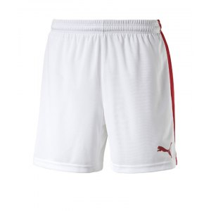 puma-pitch-short-mit-innenslip-hose-kurz-kindershort-teamwear-teamsport-vereinsausstattung-kids-children-kinder-weiss-f12-702075.png