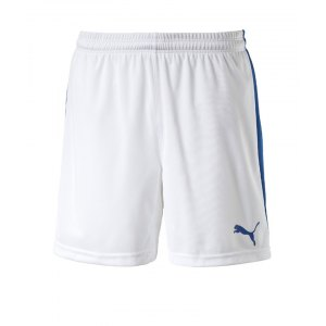 puma-pitch-short-mit-innenslip-hose-kurz-kindershort-teamwear-teamsport-vereinsausstattung-kids-children-kinder-weiss-f13-702075.jpg