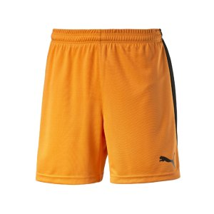 puma-pitch-short-mit-innenslip-hose-kurz-herrenshort-teamwear-teamsport-vereinsausstattung-men-herren-maenner-orange-f08-702075.png