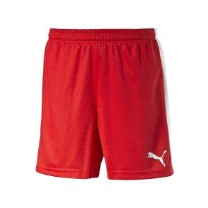 puma-pitch-short-mit-innenslip-hose-kurz-herrenshort-teamwear-teamsport-vereinsausstattung-men-herren-maenner-rot-f01-702075.jpg