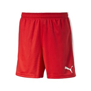 puma-pitch-short-mit-innenslip-hose-kurz-herrenshort-teamwear-teamsport-vereinsausstattung-men-herren-maenner-rot-f01-702075.png