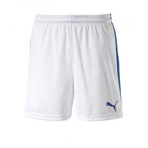 puma-pitch-short-mit-innenslip-hose-kurz-herrenshort-teamwear-teamsport-vereinsausstattung-men-herren-maenner-weiss-f13-702075.jpg