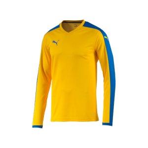 puma-pitch-longsleeved-shirt-trikot-langarm-herren-maenner-man-herrenshirt-trainingskleidung-mannschaftskleidung-teamwear-gelb-f20-702088.jpg