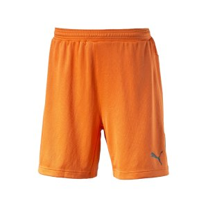 puma-stadium-gk-short-torwartshort-goalkeeper-torhueter-short-hose-men-herren-maenner-orange-f36-102090.png
