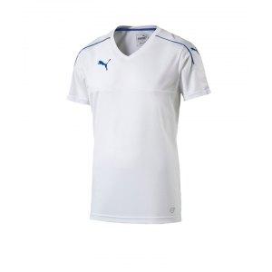 puma-accuracy-trikot-kurzarm-jersey-teamsport-vereine-men-herren-maenner-weiss-blau-f13-702214.jpg