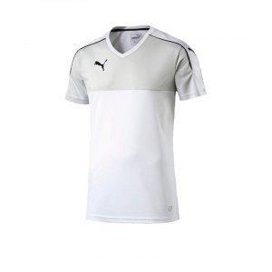 puma-accuracy-trikot-kurzarm-jersey-teamsport-vereine-men-herren-maenner-weiss-schwarz-f04-702214.jpg